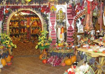Traditional cellar in Transylvania